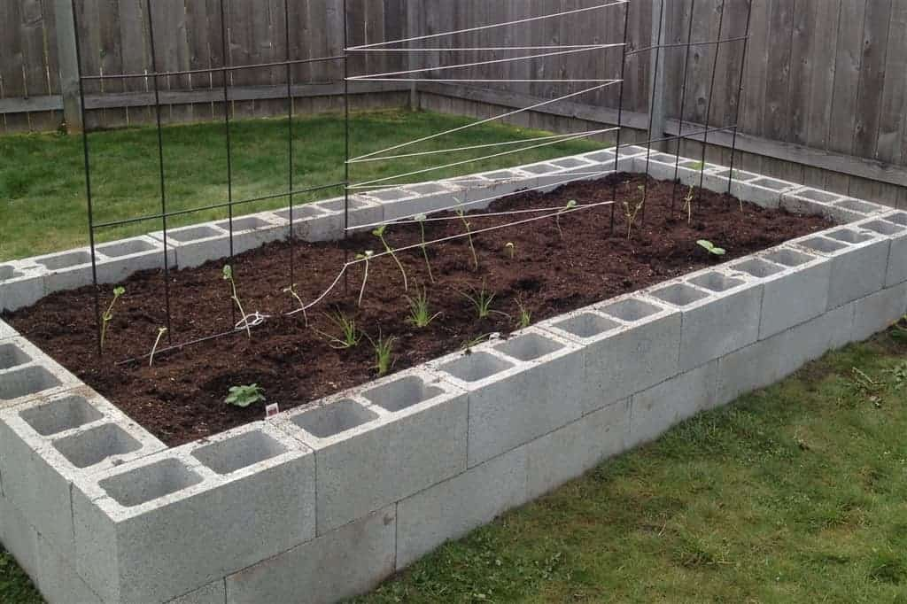How Long Raised Bed