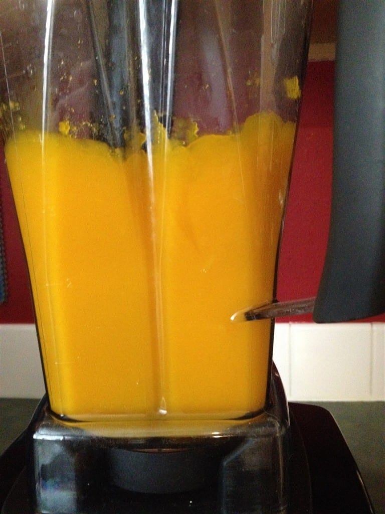Pumpkin Puree in Vitamix