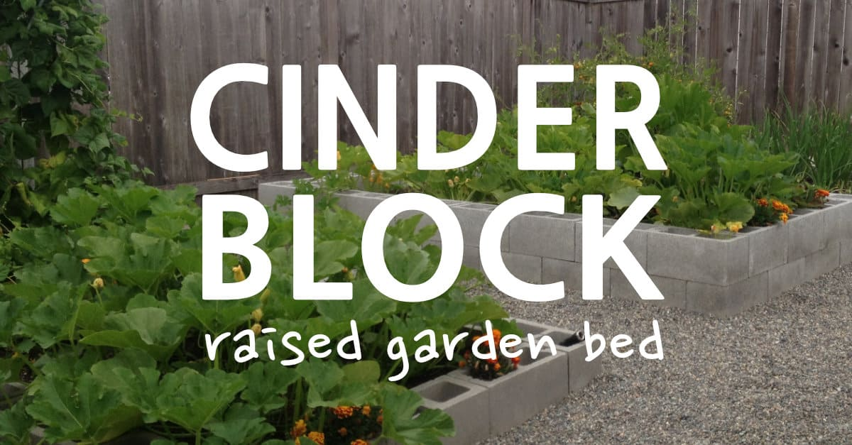 How to Build a Cinder Block Raised Garden Bed - Sunshine ...