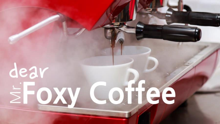 Dear Mr. Foxy Coffee