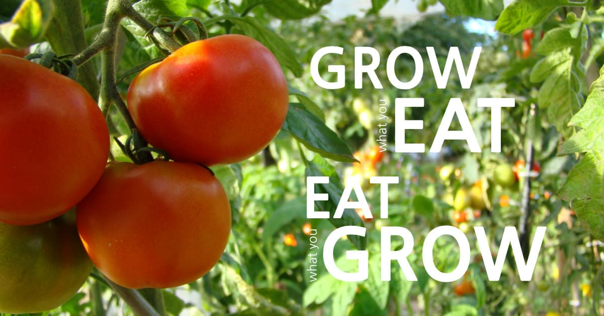Grow What You Eat, Eat What You Grow