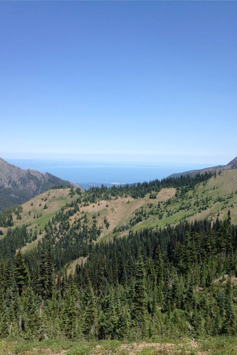 Hurricane Ridge Strait of Juan de Fuca