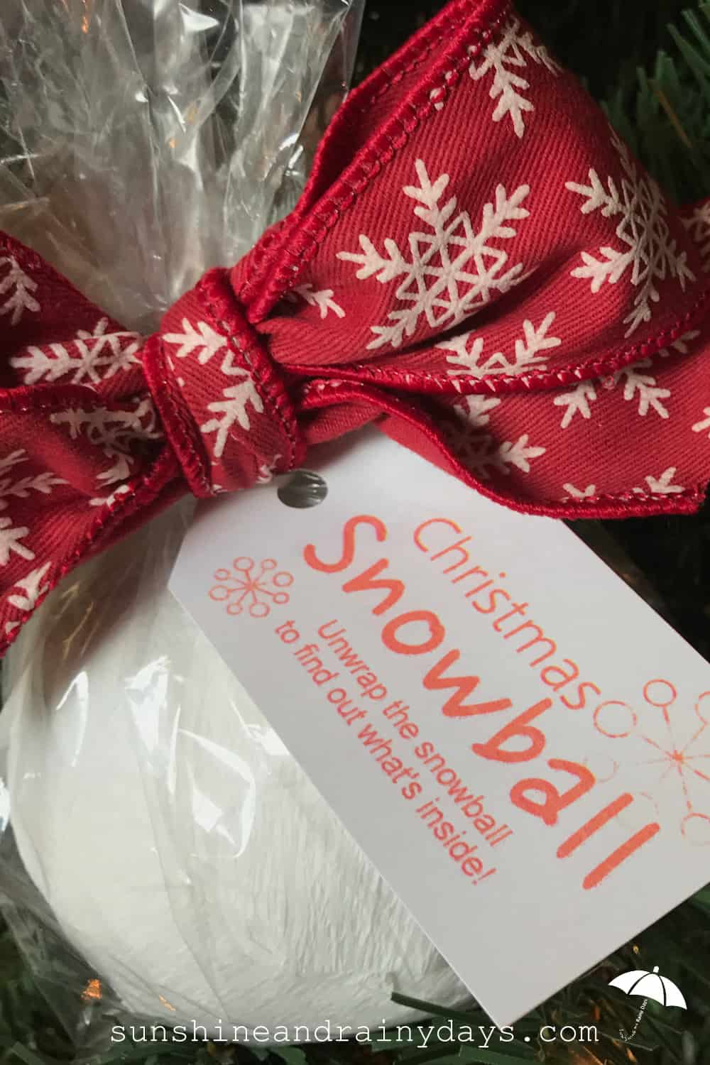 Christmas Snowball - A Creative Way to Give Money! - Sunshine and ...
