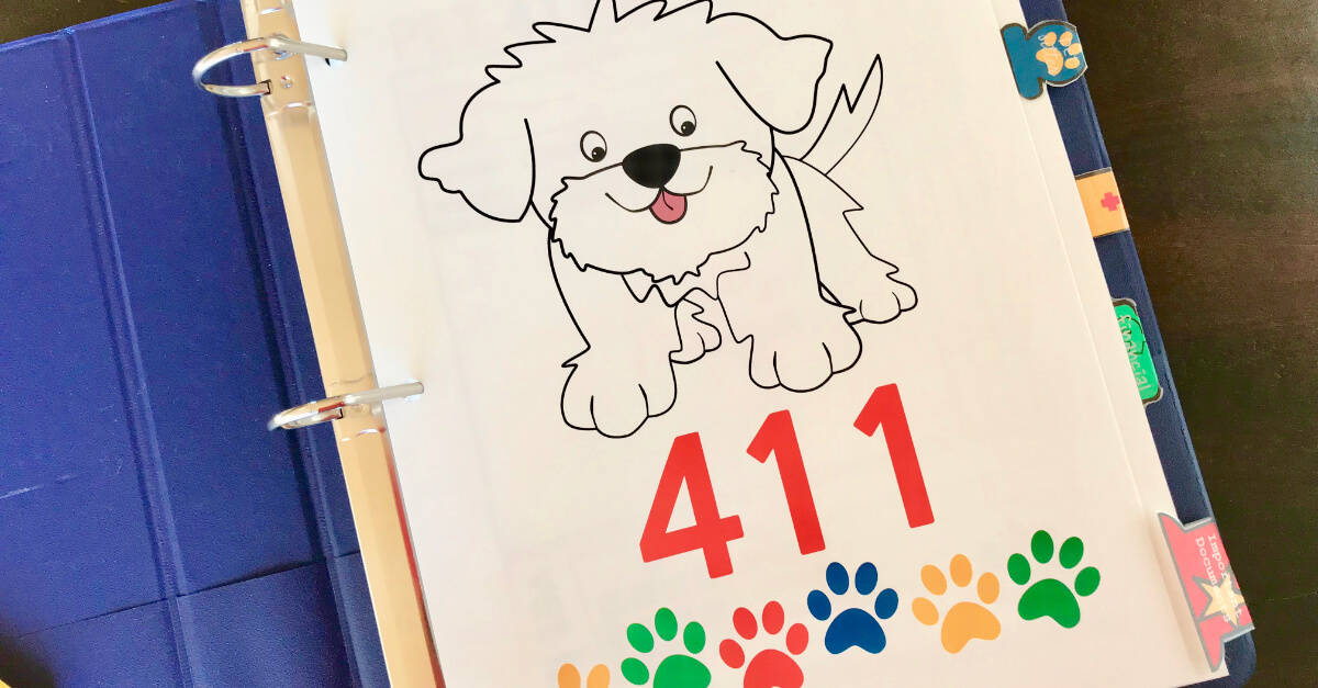 Big Book Of Everything For Pets 411 Cover Page