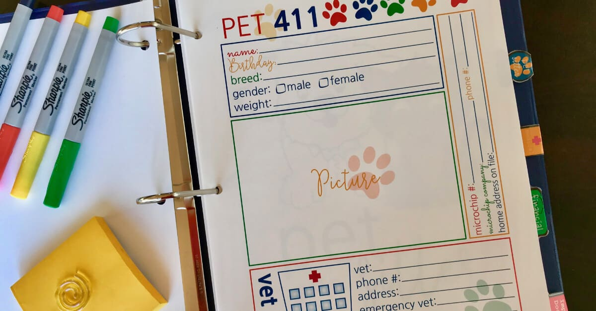 Big Book Of Everything For Pets Pet 411
