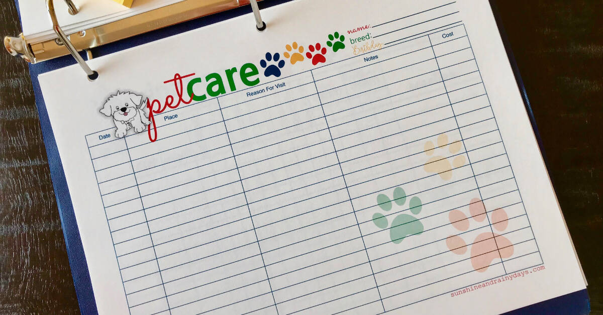 Big Book Of Everything For Pets Pet Care