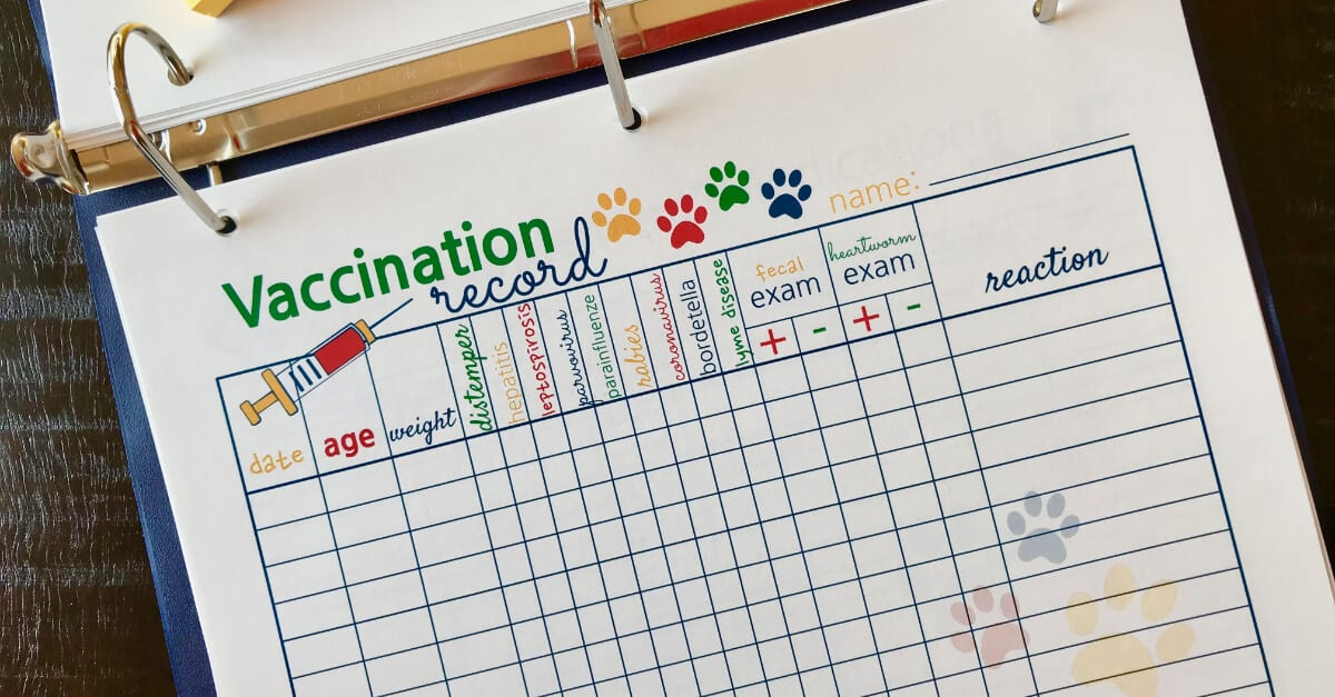 Big Book Of Everything For Pets Vaccination Record