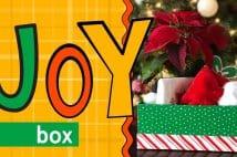 Christmas JOY Box
