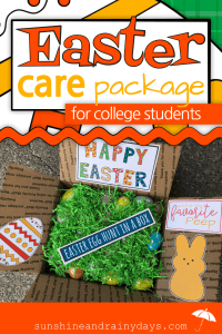 The Easter Care Package Printables are the perfect way to make your Easter package Egg-stra Special! Easter Care Package College | Easter Care Package Ideas | Easter In A Box | #EasterCarePackage #EasterInABox #SARD