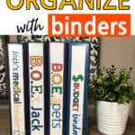 Organized Binders On A Table Next To A Plant