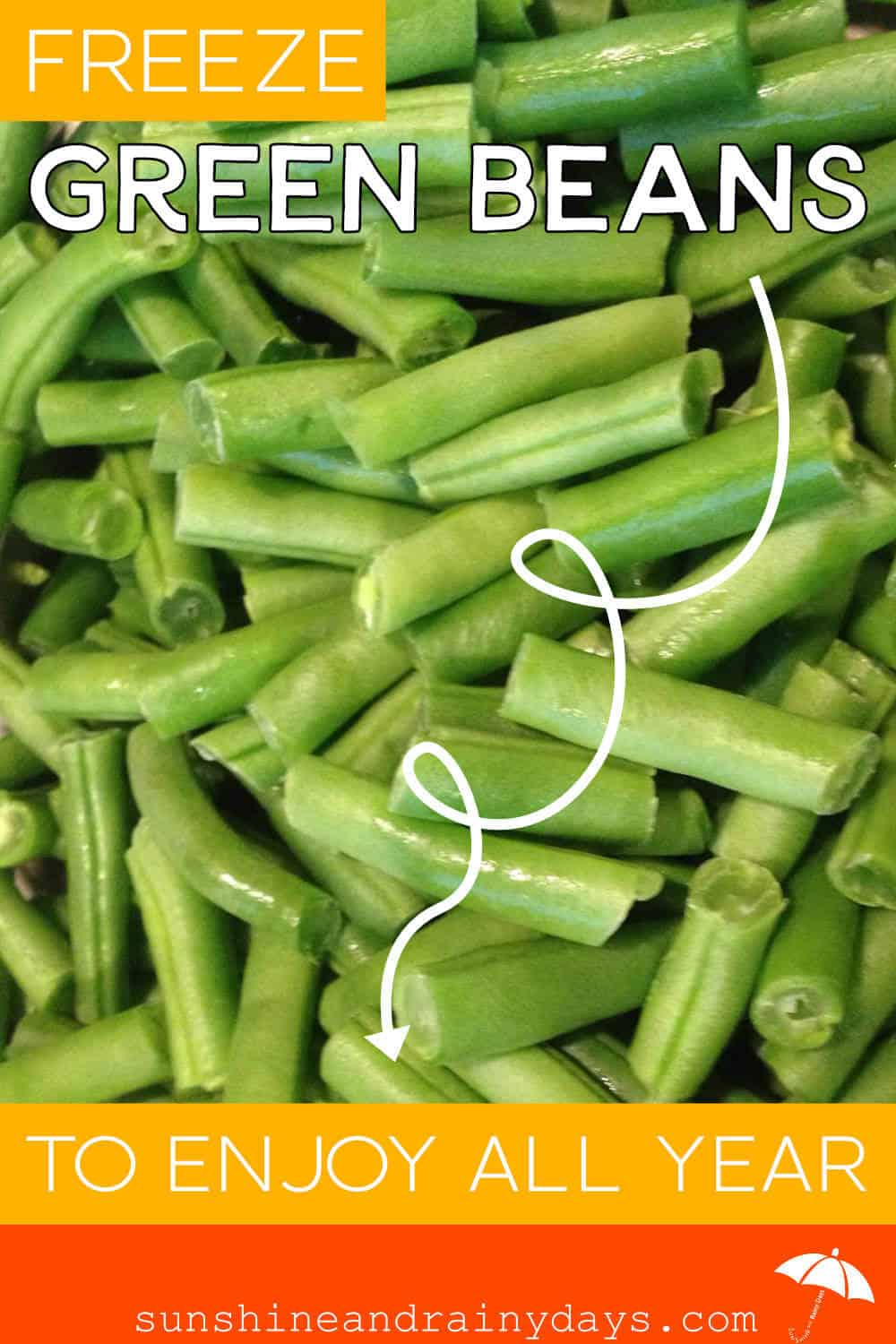 Freeze Fresh Green Beans