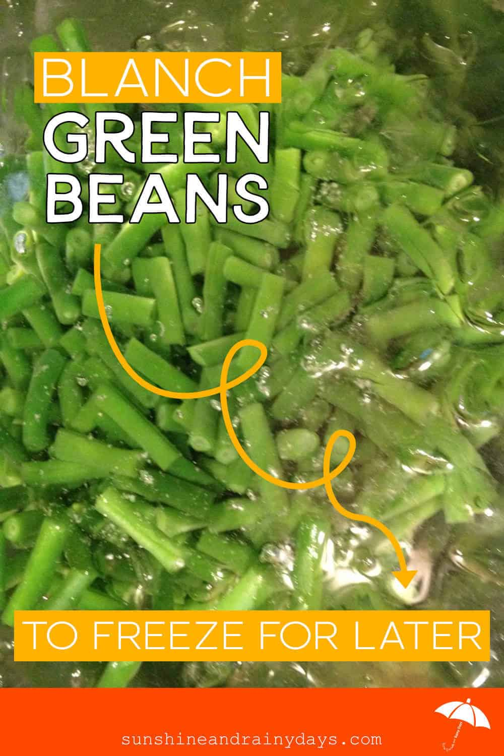 Blanch Green Beans To Freeze For Later
