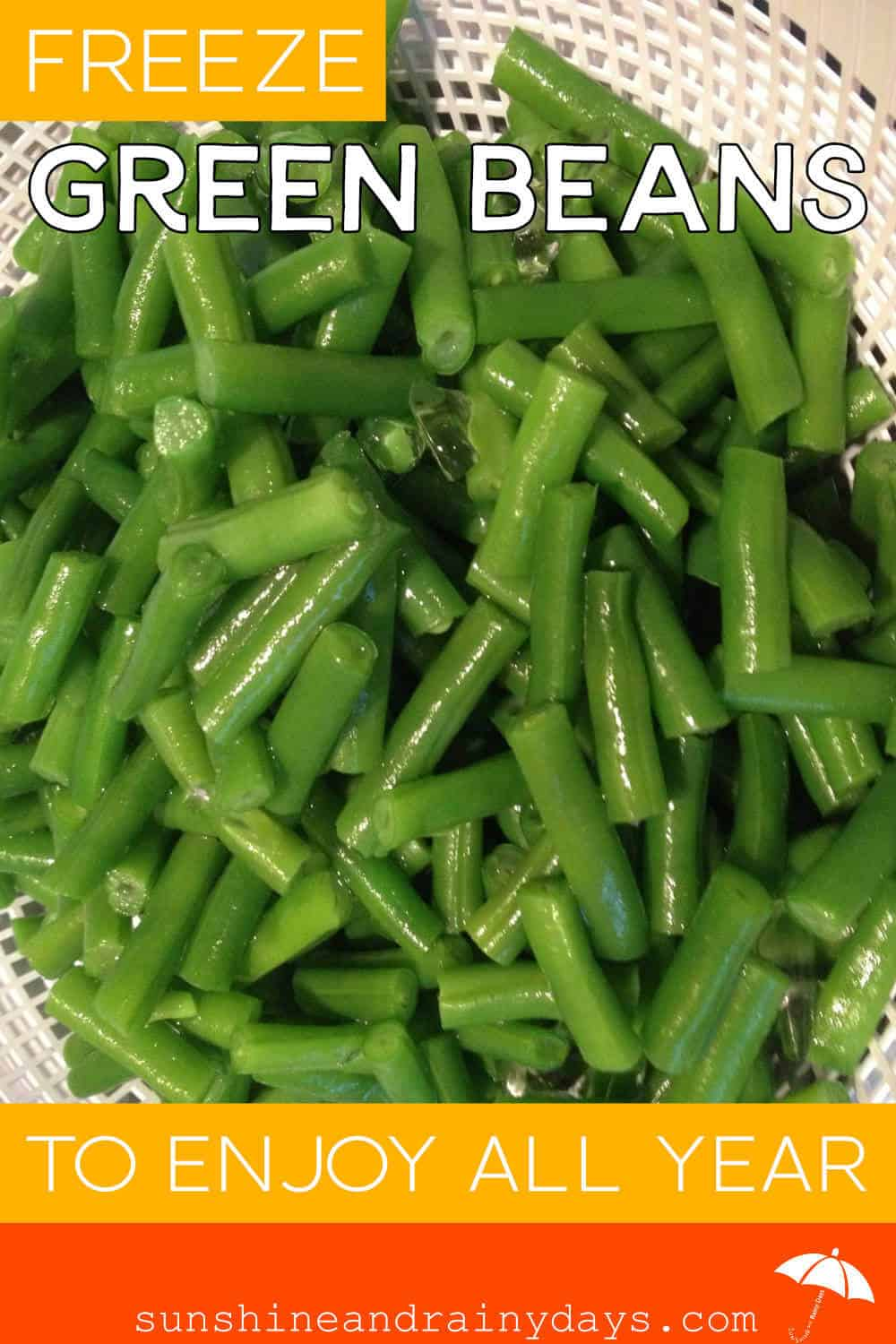 Freeze Green Beans To Enjoy All Year