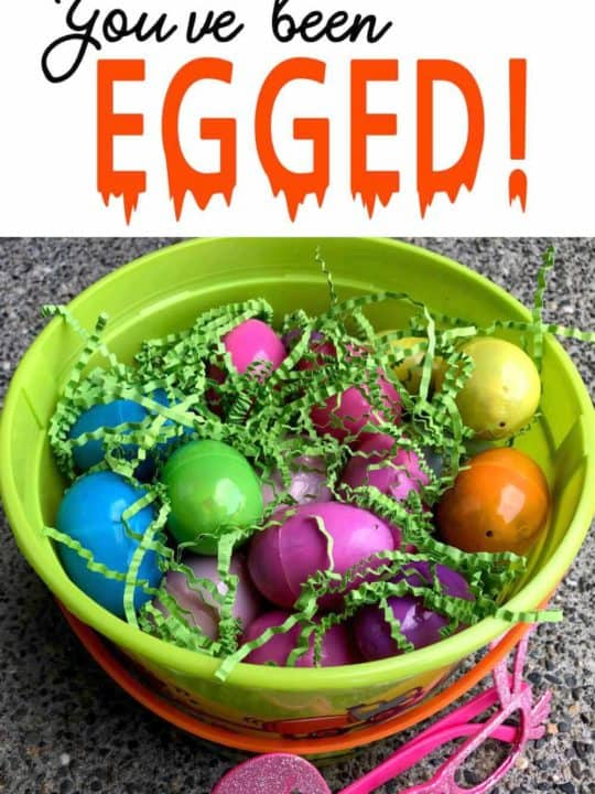 Bucket full of eggs!