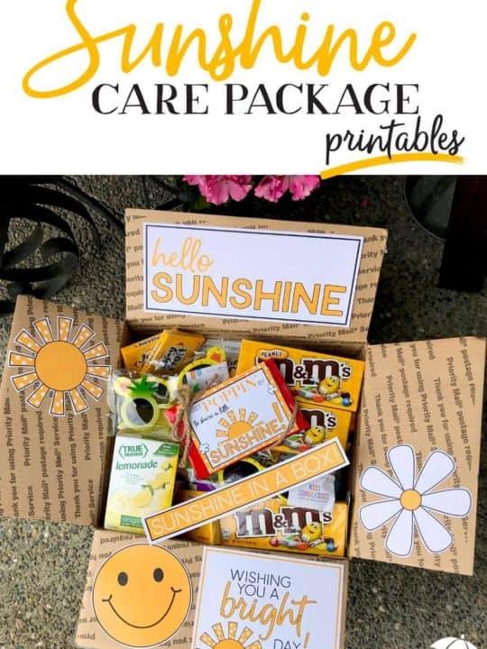 Sunshine Box Ideas